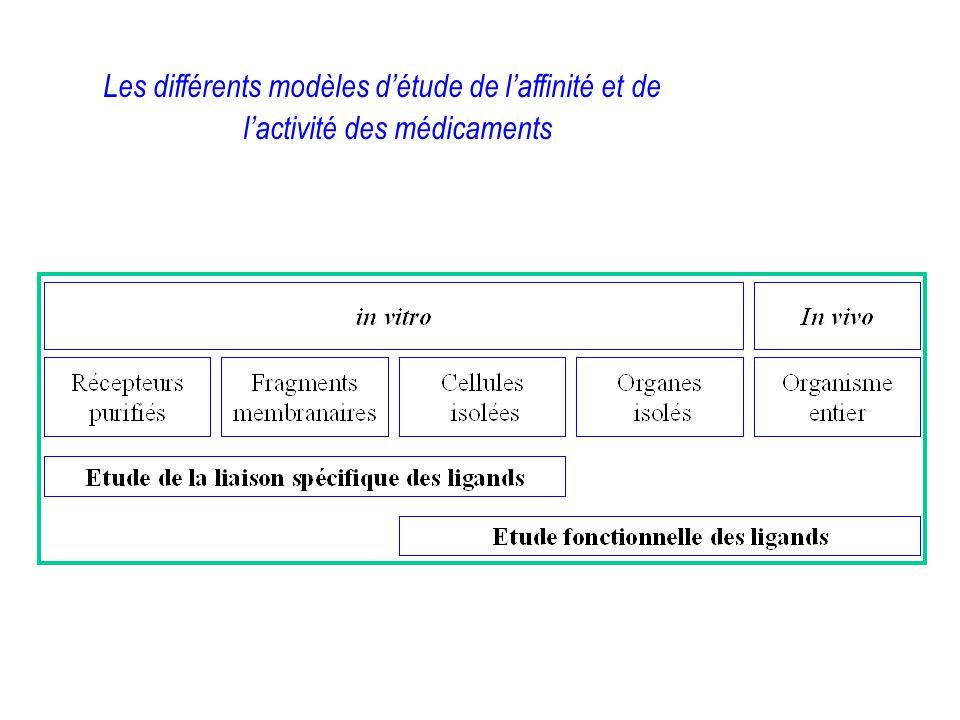 Les différents modèles d'étude de l'affinité et de l'activité des médicaments