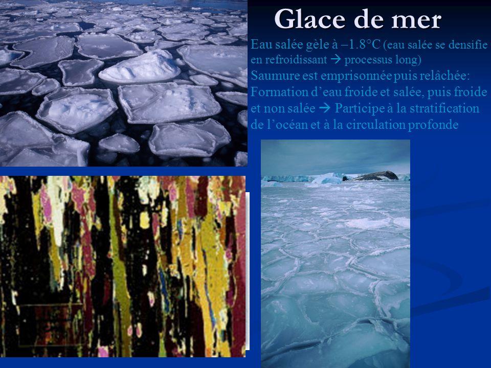 Glace de mer Eau salée gèle à –1.8°C (eau salée se densifie