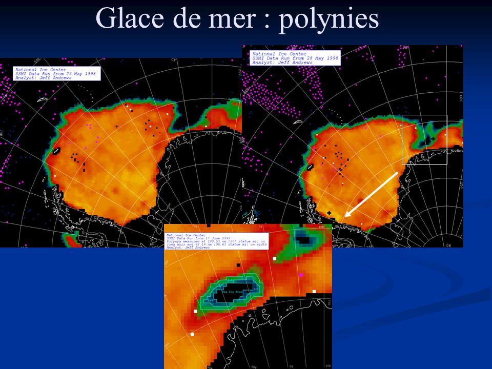 Glace de mer : polynies