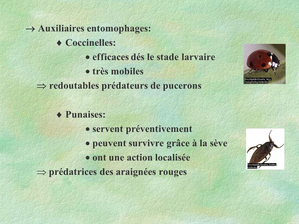 Auxiliaires entomophages: