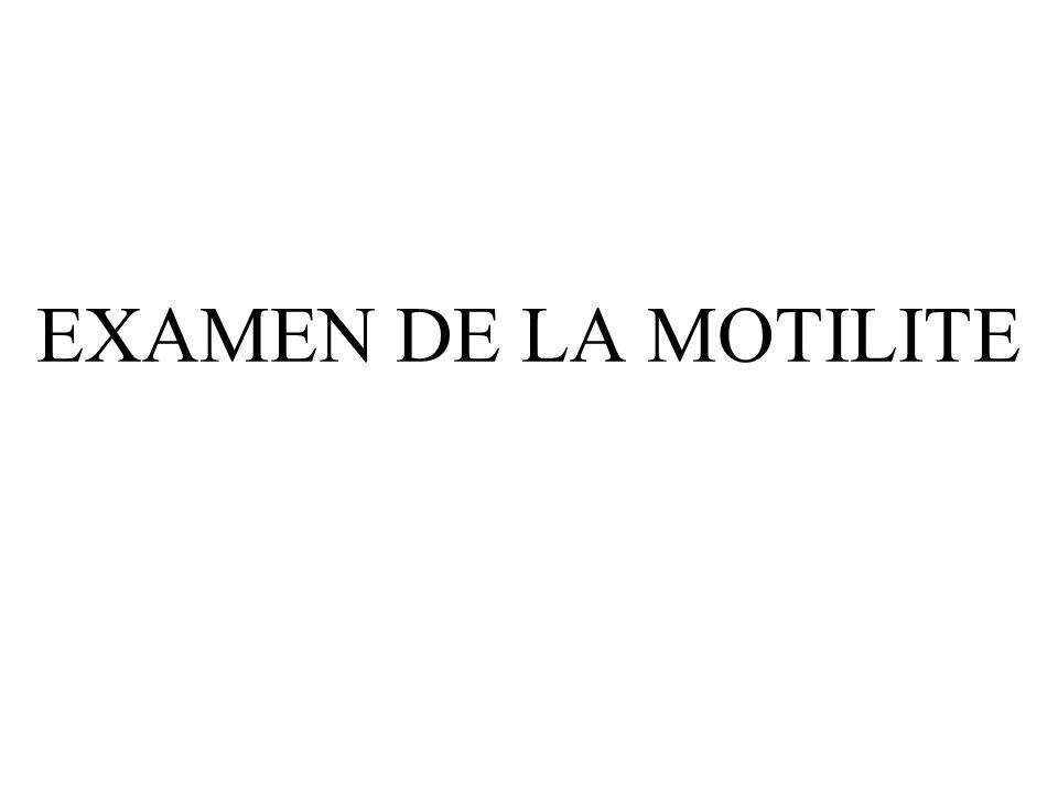 EXAMEN DE LA MOTILITE