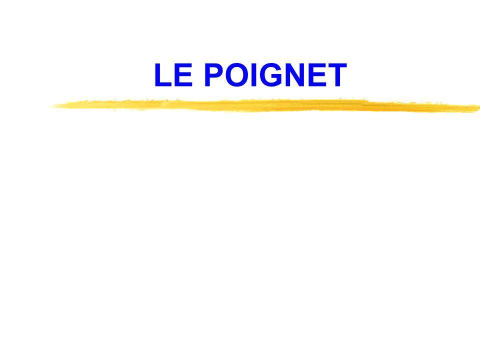 LE POIGNET