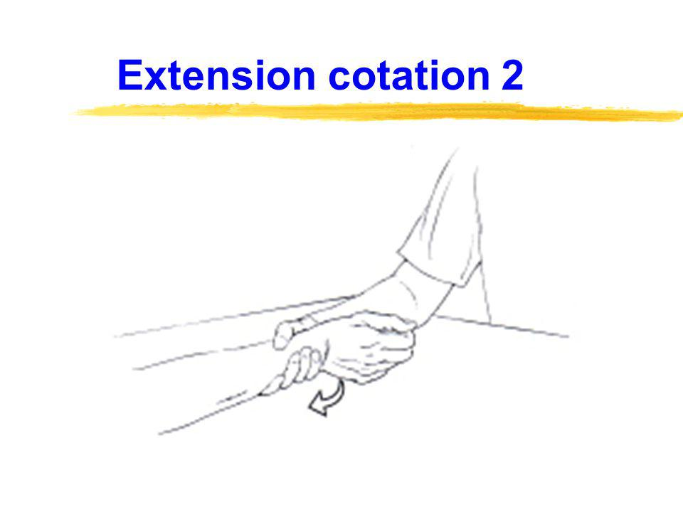 Extension cotation 2