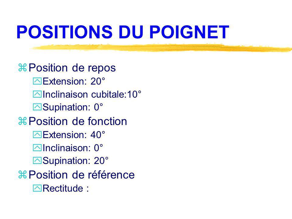 POSITIONS DU POIGNET Position de repos Position de fonction