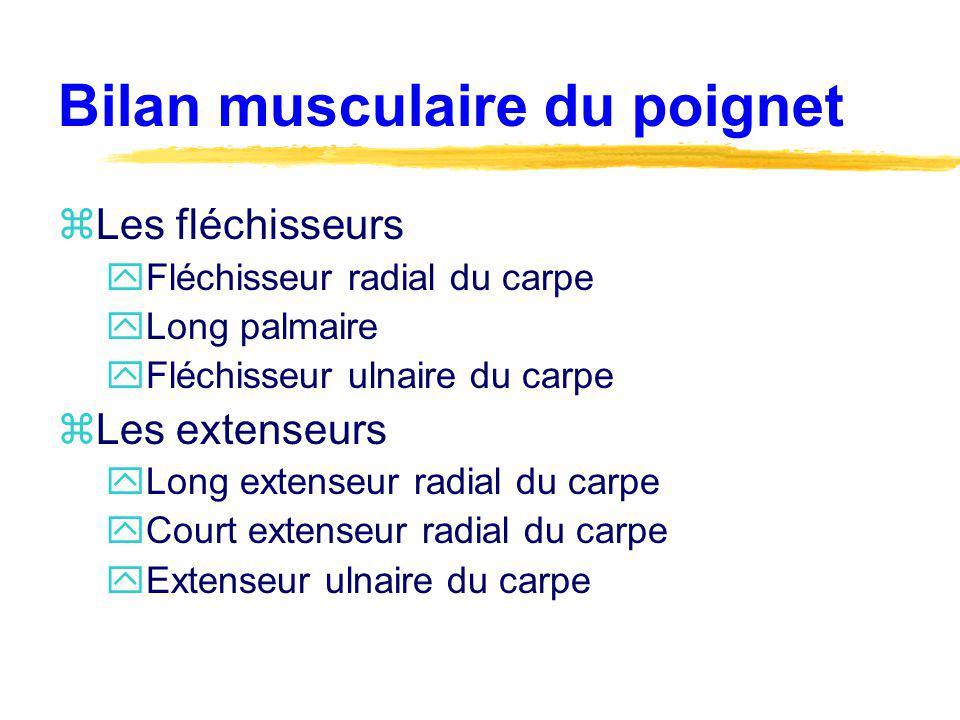 Bilan musculaire du poignet