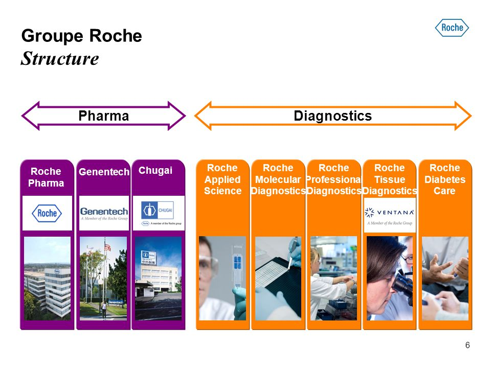 Groupe Roche Structure