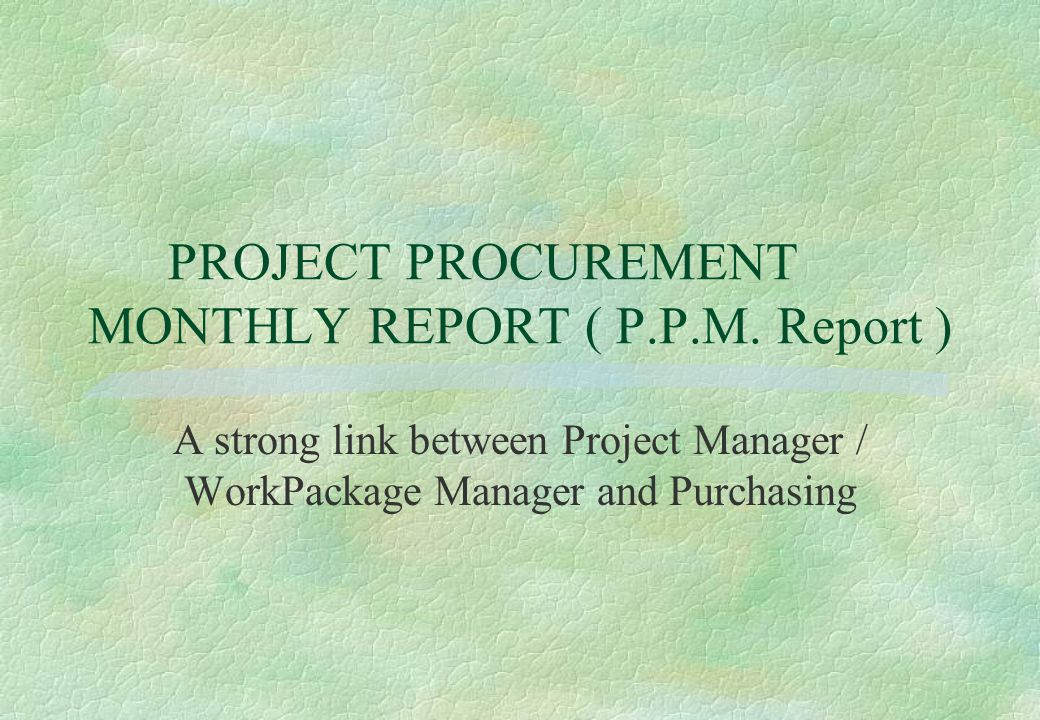 PROJECT PROCUREMENT MONTHLY REPORT ( P.P.M. Report )