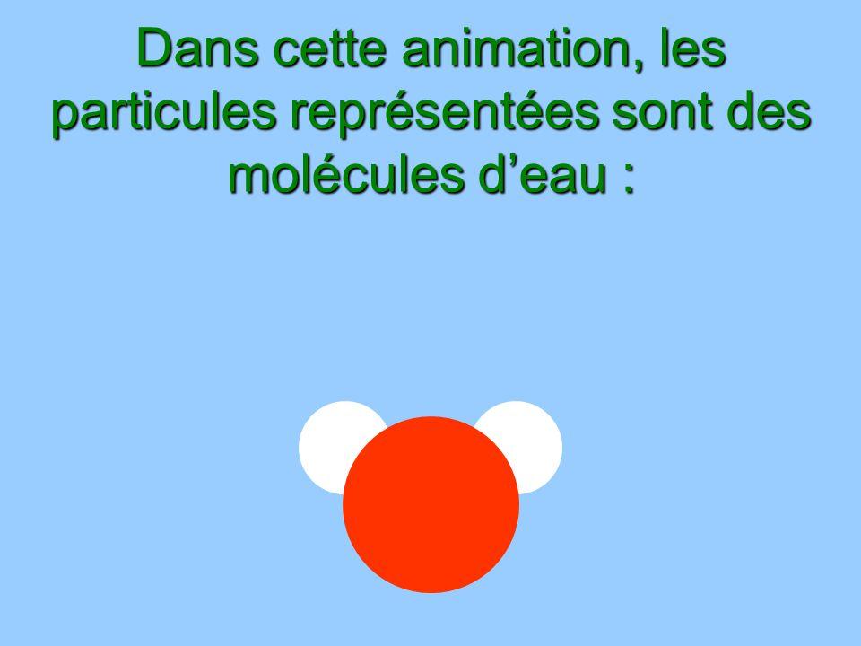 Dans cette animation, les particules représentées sont des molécules d'eau :