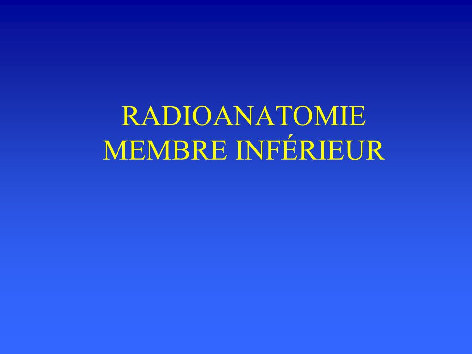 RADIOANATOMIE MEMBRE INFÉRIEUR