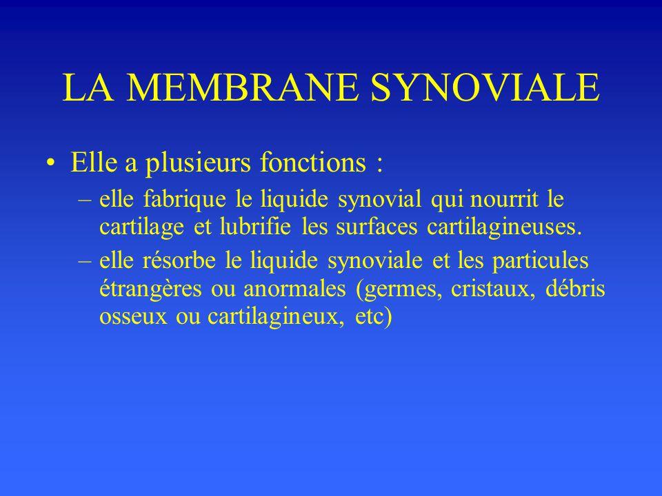LA MEMBRANE SYNOVIALE Elle a plusieurs fonctions :
