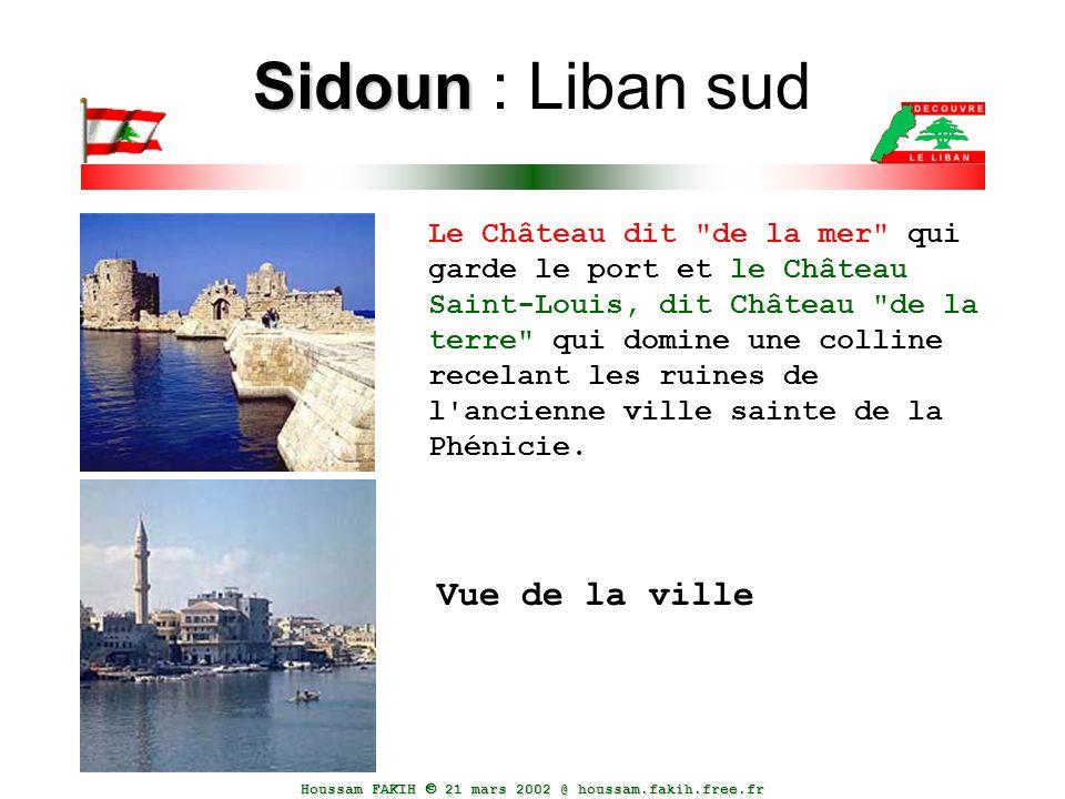 Sidoun : Liban sud Vue de la ville
