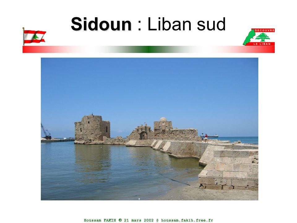 Sidoun : Liban sud