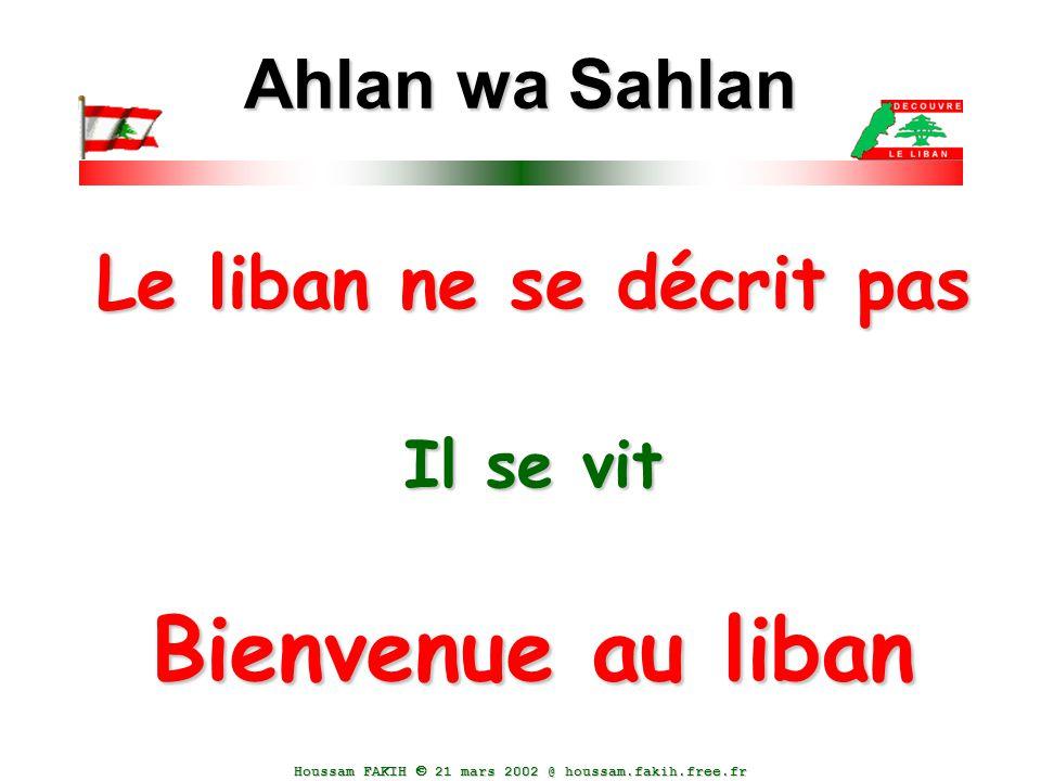 Le liban ne se décrit pas