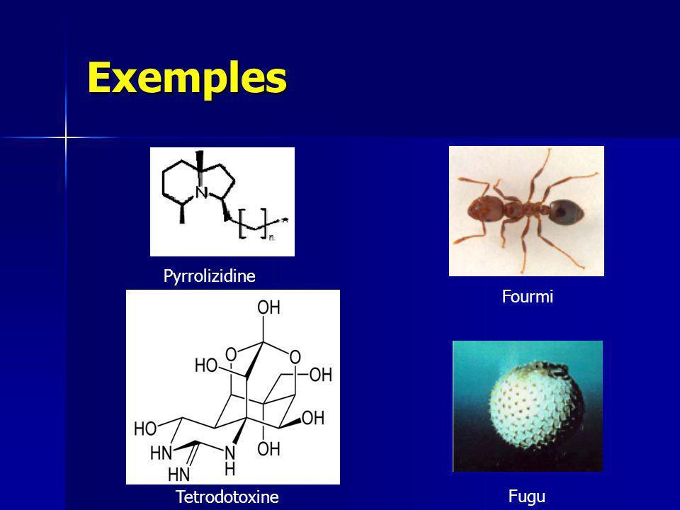 Exemples Pyrrolizidine Fourmi Tetrodotoxine Fugu