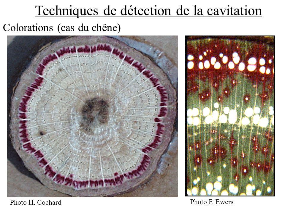 Techniques de détection de la cavitation