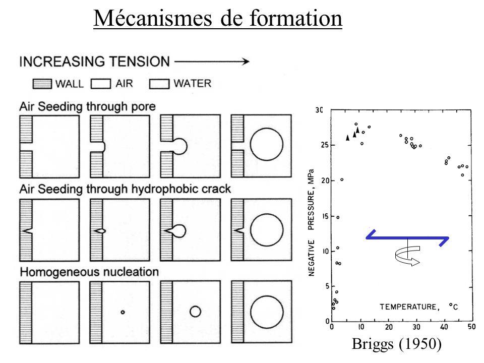 Mécanismes de formation
