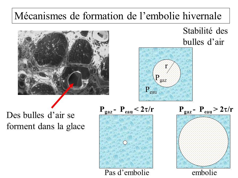 Mécanismes de formation de l'embolie hivernale