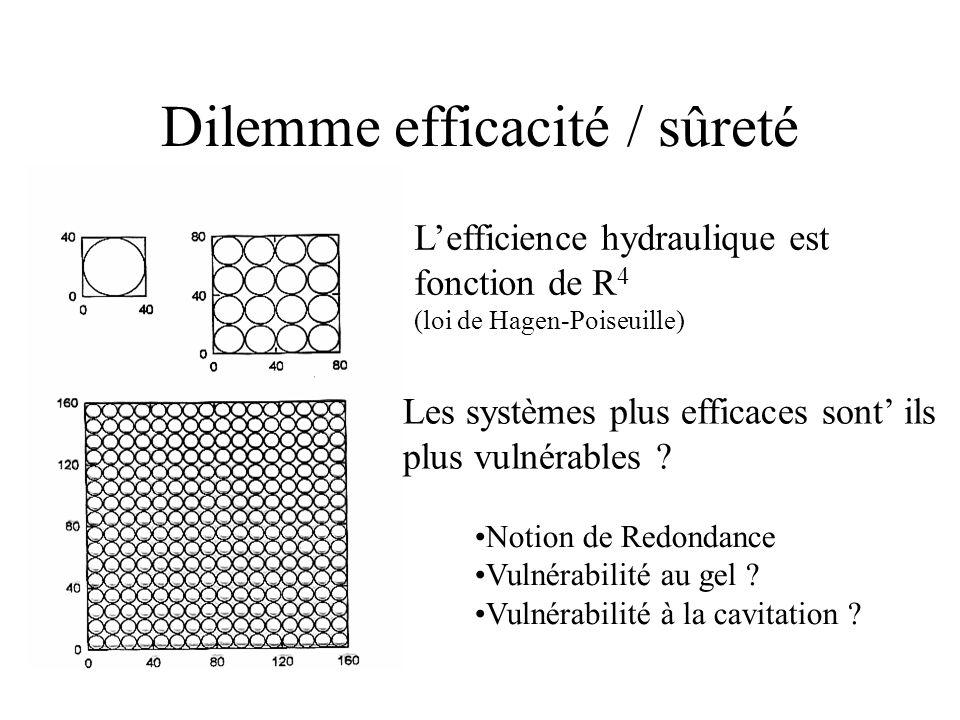 Dilemme efficacité / sûreté