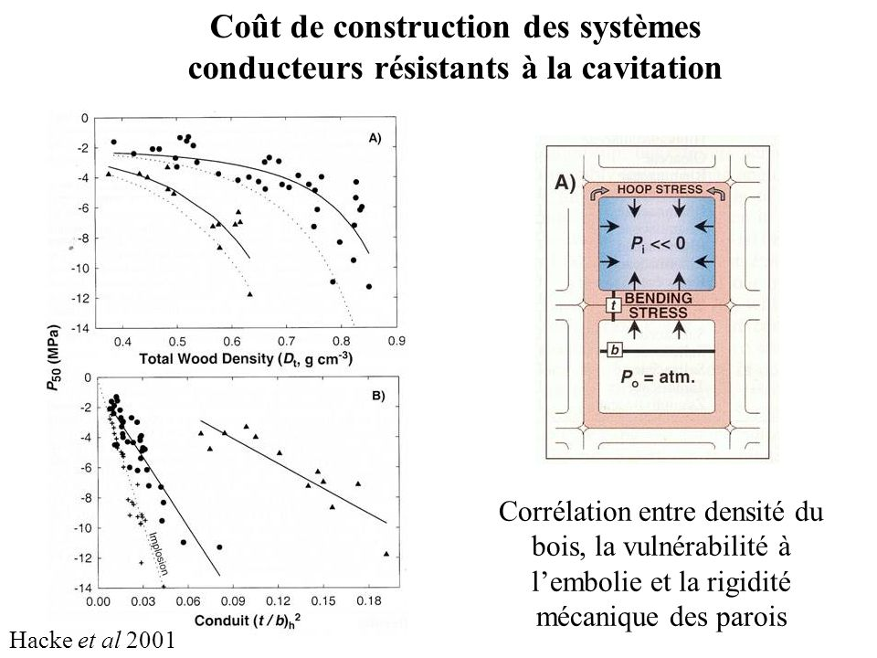 Coût de construction des systèmes conducteurs résistants à la cavitation