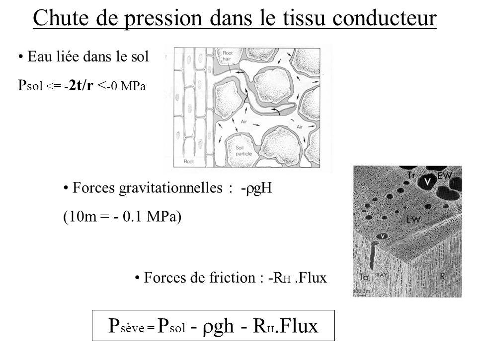 Chute de pression dans le tissu conducteur