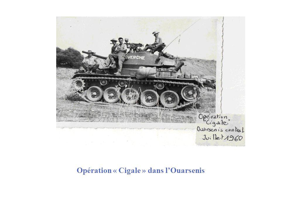 Opération « Cigale » dans l'Ouarsenis