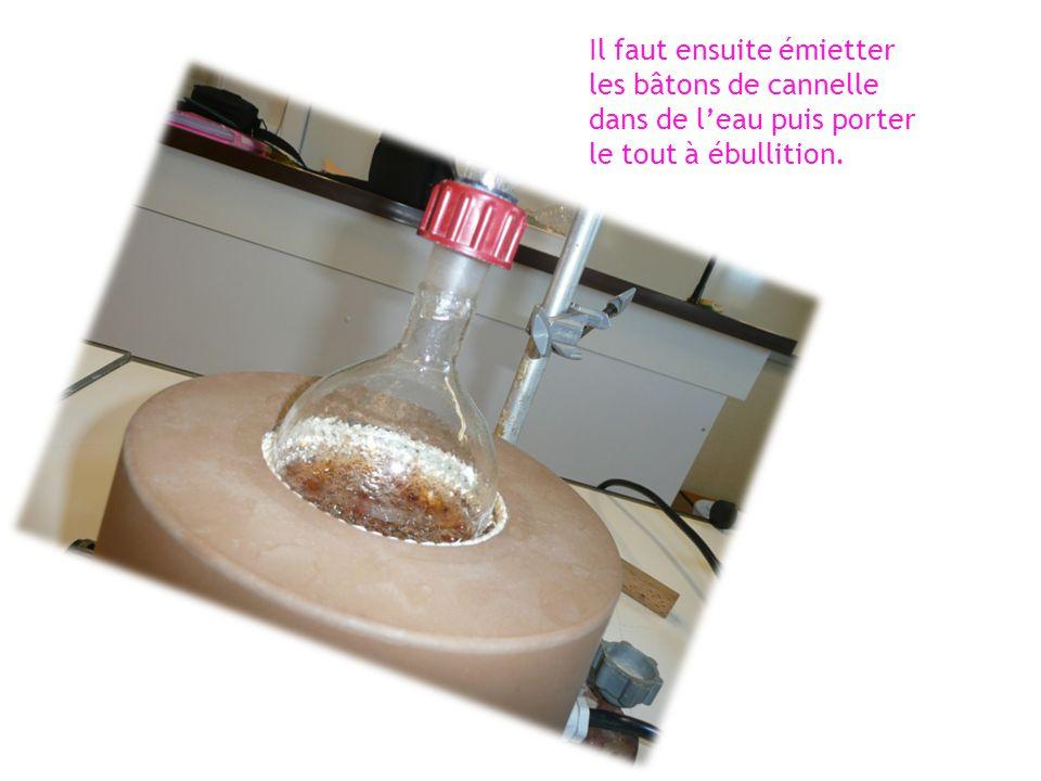 Il faut ensuite émietter les bâtons de cannelle dans de l'eau puis porter le tout à ébullition.