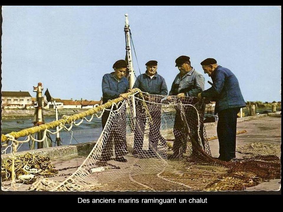 Des anciens marins raminguant un chalut