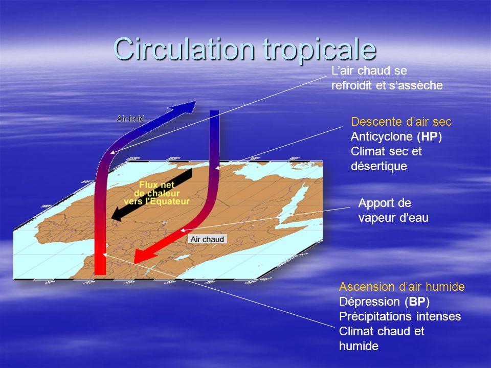 Circulation tropicale