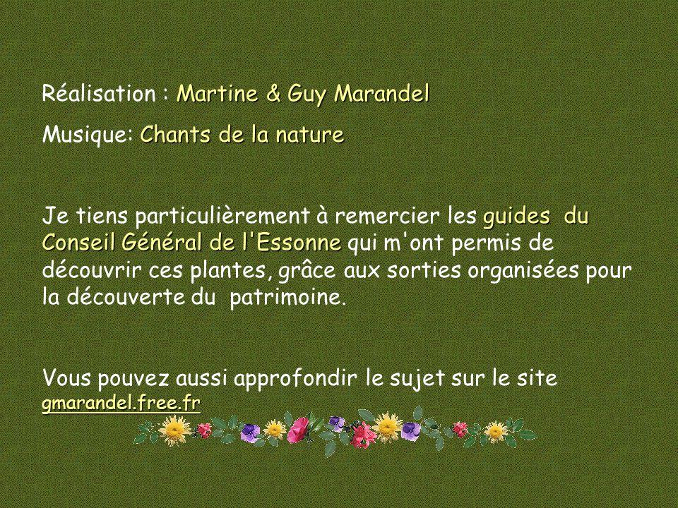Réalisation : Martine & Guy Marandel