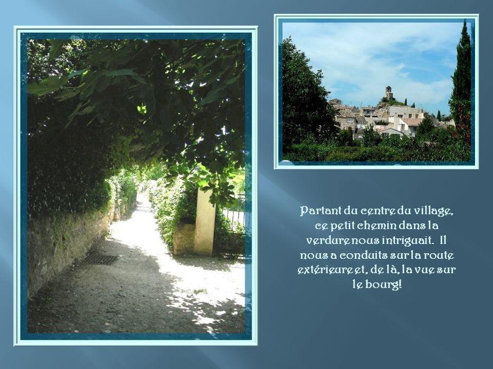 Partant du centre du village, ce petit chemin dans la verdure nous intriguait.