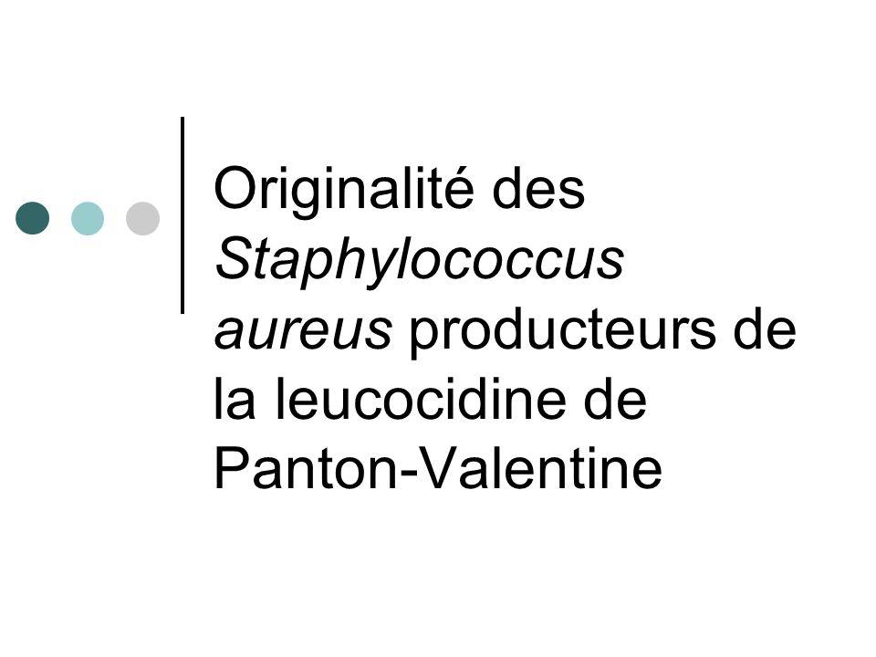 Originalité des Staphylococcus aureus producteurs de la leucocidine de Panton-Valentine