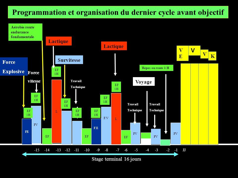 Programmation et organisation du dernier cycle avant objectif