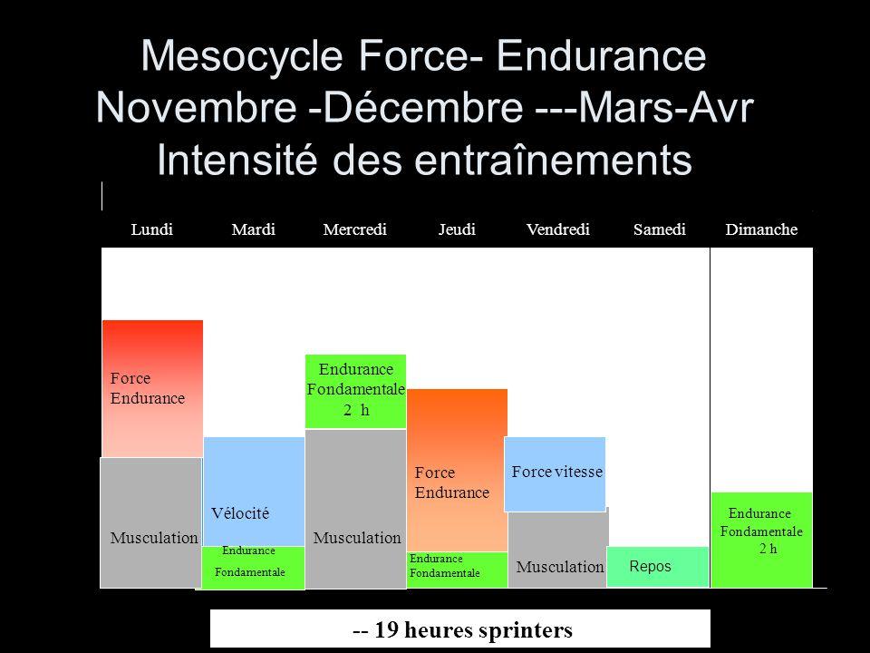Endurance Fondamentale 2 h