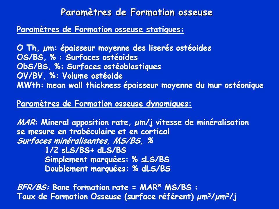 Paramètres de Formation osseuse