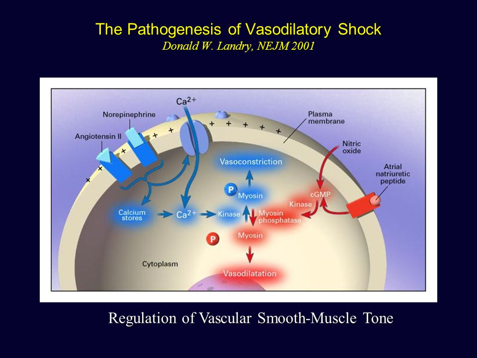 The Pathogenesis of Vasodilatory Shock Donald W. Landry, NEJM 2001