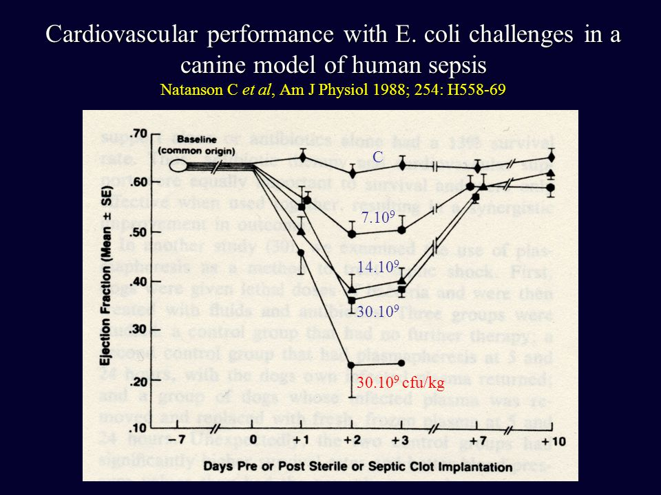 Cardiovascular performance with E