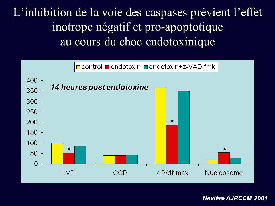 L'inhibition de la voie des caspases prévient l'effet inotrope négatif et pro-apoptotique au cours du choc endotoxinique