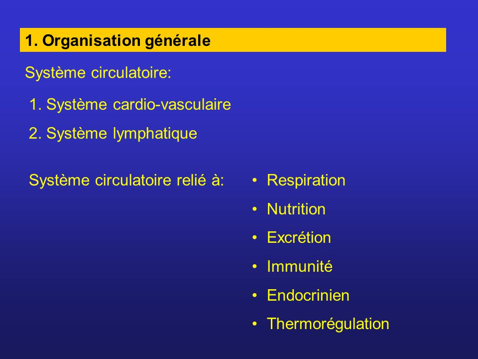 1. Organisation générale