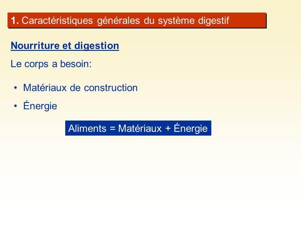 1. Caractéristiques générales du système digestif