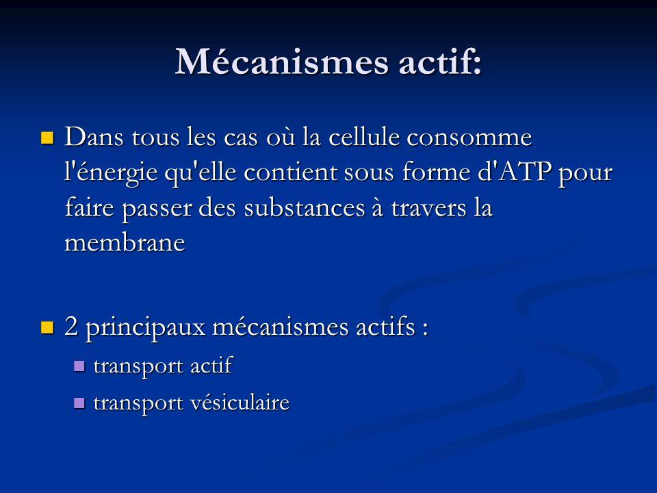 Mécanismes actif: