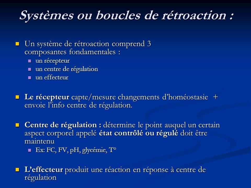 Systèmes ou boucles de rétroaction :