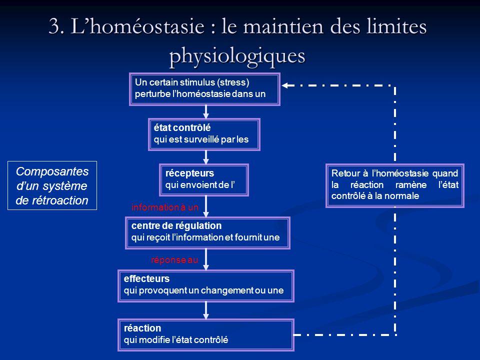 3. L'homéostasie : le maintien des limites physiologiques