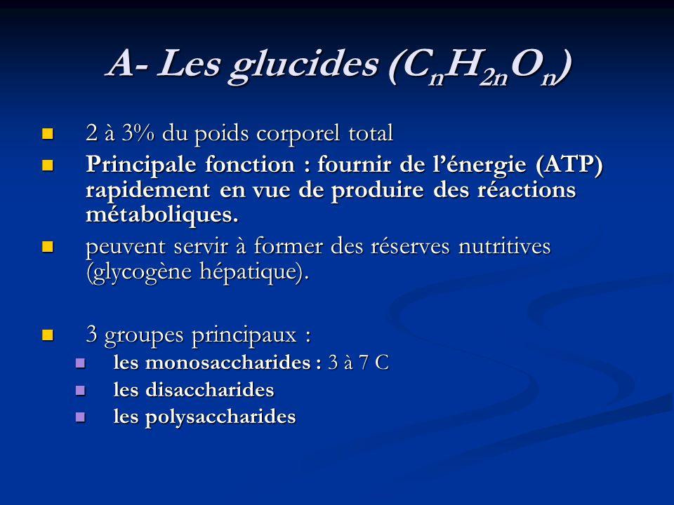 A- Les glucides (CnH2nOn)
