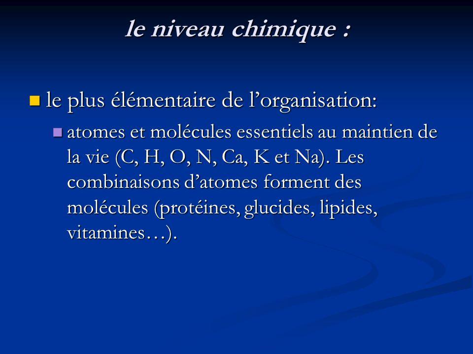 le niveau chimique : le plus élémentaire de l'organisation:
