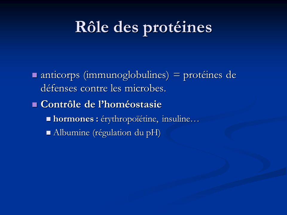 Rôle des protéines anticorps (immunoglobulines) = protéines de défenses contre les microbes. Contrôle de l'homéostasie.