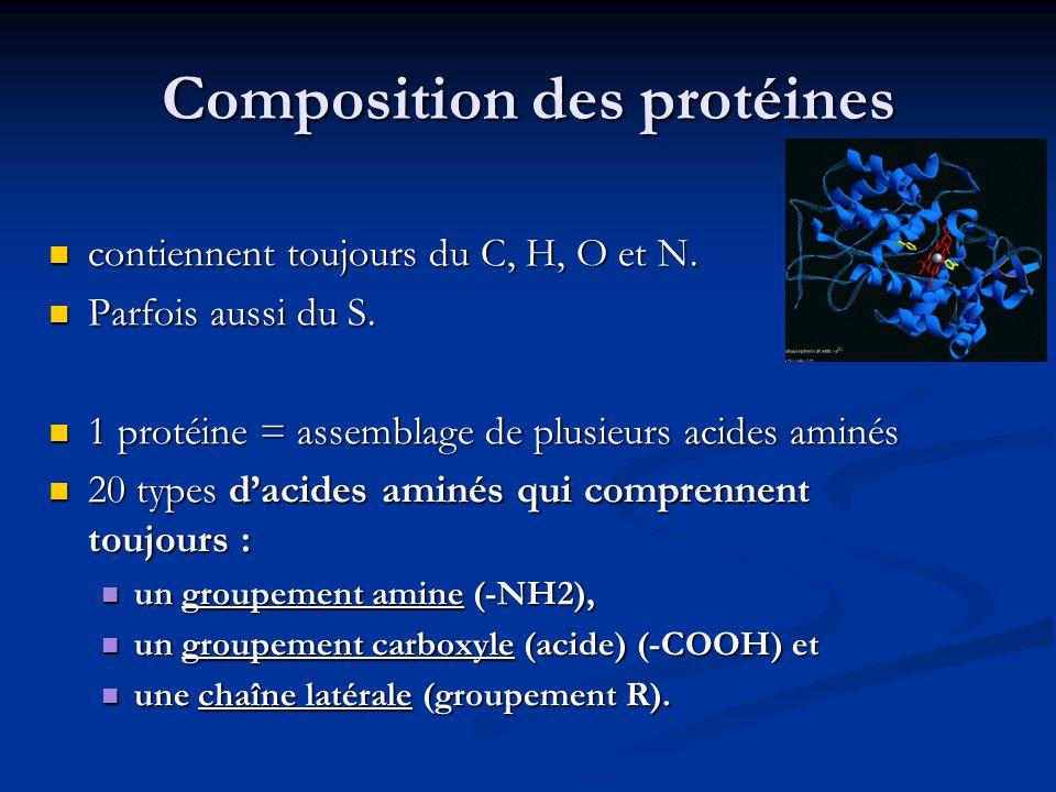 Composition des protéines