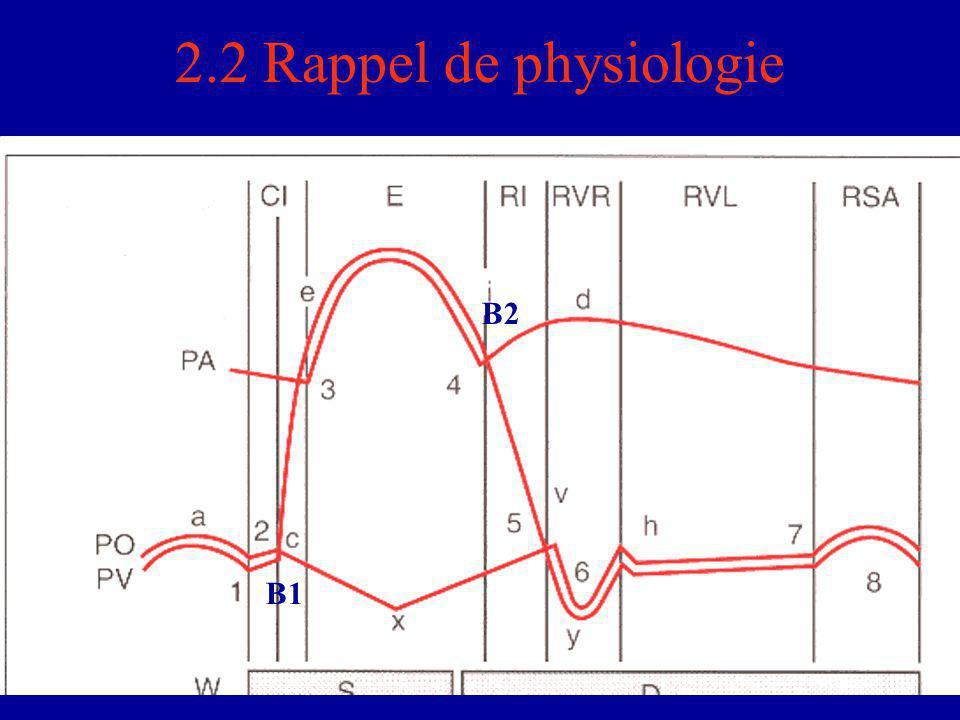 2.2 Rappel de physiologie B2 B1