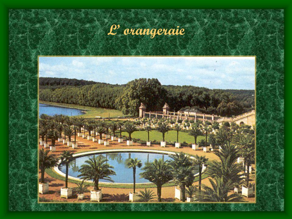 L' orangeraie