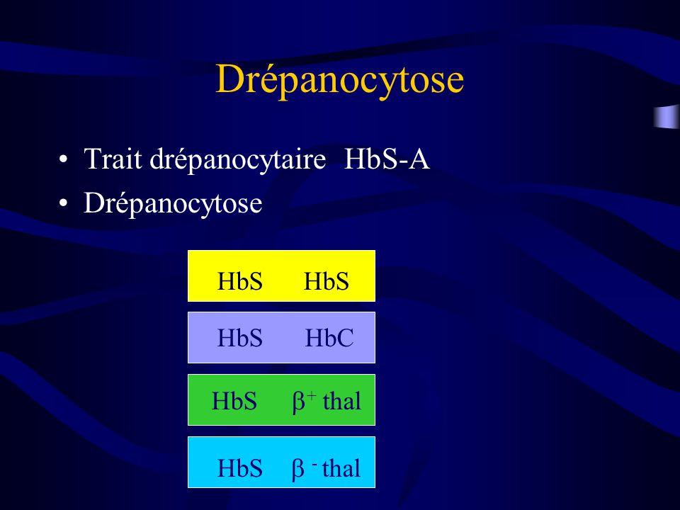 Drépanocytose Trait drépanocytaire HbS-A Drépanocytose HbS HbS HbS HbC
