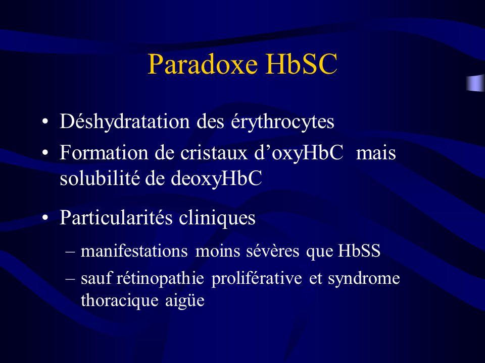 Paradoxe HbSC Déshydratation des érythrocytes